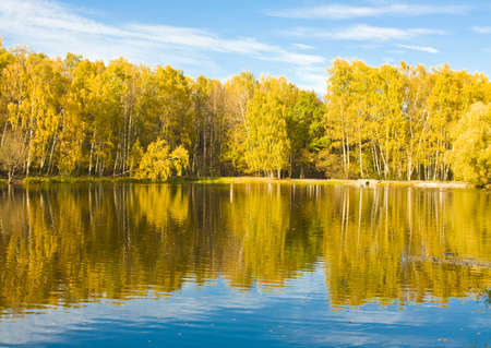 izmaylovskiy: Autumn landscape - lake and birch forest on bank with reflection in water. Recorded in Izmaylovskiy park in Moscow on Red lake.