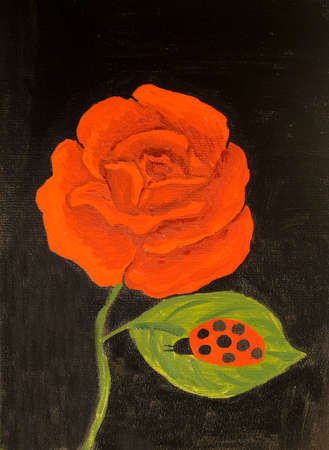 red rose black background: One big red rose on black background with ladybird, oil painting.