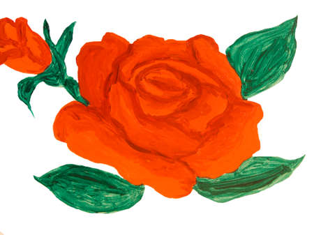 nature one painted: One big red rose on white background, oil painting. Stock Photo