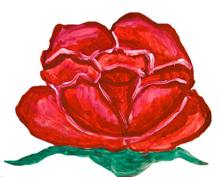 nature one painted: Oil painting, red rose on white background.