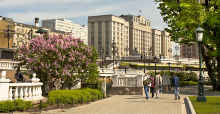 duma: MOSCOW - MAY 15, 2014: Alexandrovsky garden near Moscow Kremlin on Manezhnaya square in spring and building of State Duma parlament, has been built in 1935.
