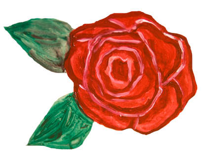 nature one painted: One red rose on white background, oil painting.