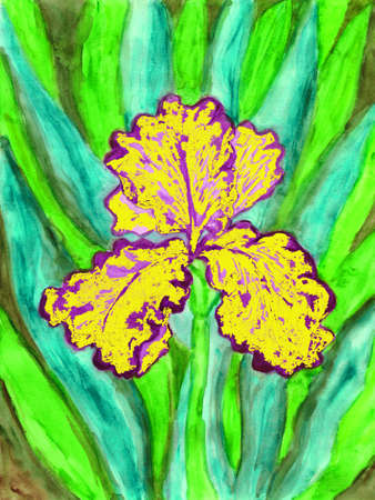 photoshop: Hand painted picture, watercolours edited in photoshop, iris of violet and yellow colour. Stock Photo