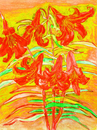 budding: Hand drawn picture in watercolours, red lilies. Stock Photo