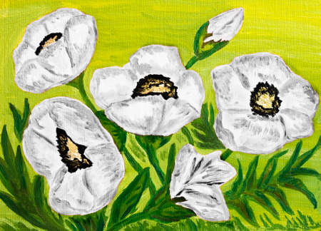 sm: Hand painted picture, oil painting, white poppies. Size of original 35 x 25 sm. Stock Photo