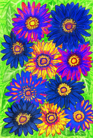 orange gerbera: Background from gerbera flowers of blue and yellow colours on green leaves, hand painted picture, watercolours.