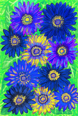 gerbera: Background from gerbera flowers of blue and yellow colours on green leaves, hand painted picture, watercolours.