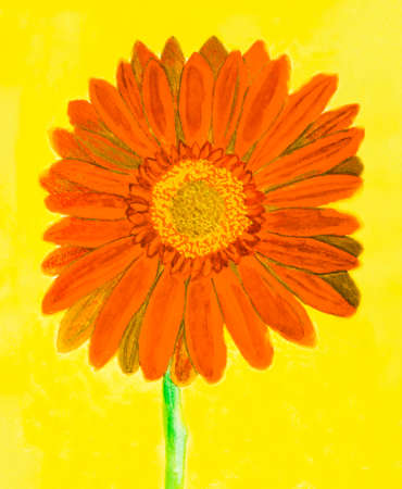 orange gerbera: Orange gerbera flower on yellow background, watercolor painting. Stock Photo