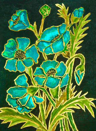 gouache: Blue poppies on black background, hand painted illustration, watercolours and gouache. Stock Photo