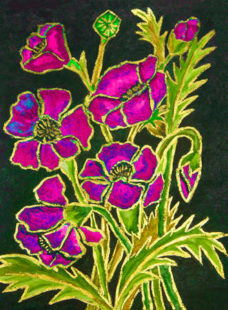 gouache: Pink poppies on black background, hand painted illustration, watercolours and gouache.