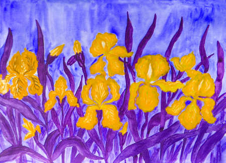 flower bed: Hand painted picture, watercolours, flower bed with many yellow irises on bluebackground.