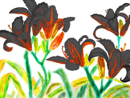 watercolour: Hand drawn picture, watercolour - black lilies.