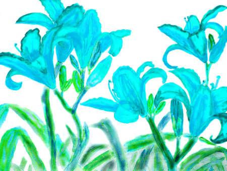 watercolour: Hand drawn picture, watercolour, blue lilies. Stock Photo