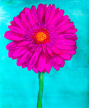 creative arts: Pink gerbera flower on blue background, watercolor painting.
