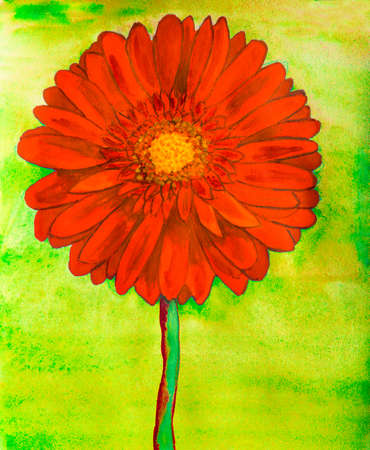 nature one painted: Red gerbera flower on yellow background, watercolor painting. Stock Photo