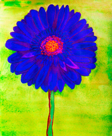 Blue gerbera flower on green background, watercolor painting.