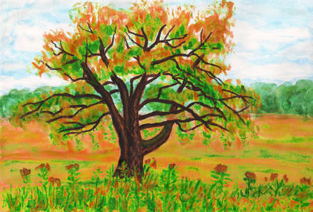 willow tree: Hand painted picture watercolours - big Willow tree on green meadow. Stock Photo