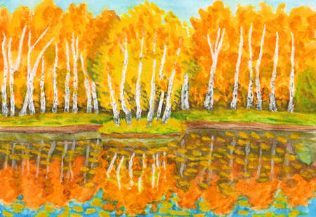birch forest: Hand painted picture, watercolours - autumn landscape, orange birch forest with reflection in water and little island with birches. Painted from real landscape in park Sokolniki in Moscow.