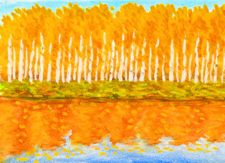 water reflection: Hand painted picture, watercolours - autumn landscape, yorange birch forest with reflection in water.