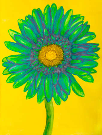 nature one painted: Green gerbera on yellow background. Stock Photo