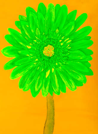 Green gerbera flower on yellow background, painting in watercolours Stock Photo