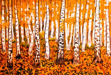 fall landscape: Hand painted picture, watercolours, landscape - orange birch forest in autumn.
