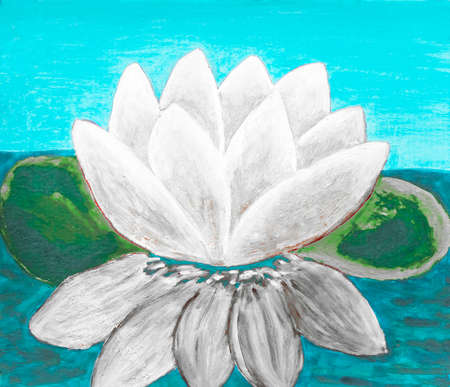 waterlily: White waterlily, oil painting.