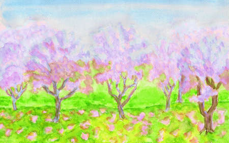 sm: Spring landscape, garden with trees in blossom of pink colour, hand painted picture, watercolours. Size of original 29,5 x 20 sm.