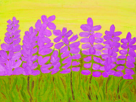lupin: Many lupin flowers of purple colour on yellow, oil painting on carbon.