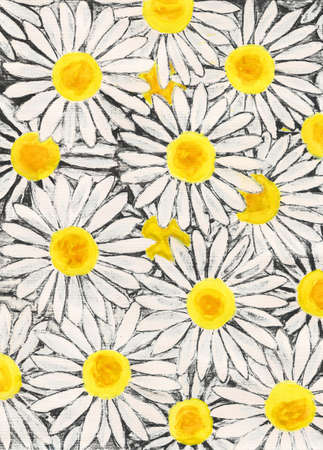 ox eye: Background with white camomiles - big ox-eye daisies, painting, gouache Stock Photo