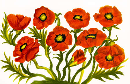Many red poppies on white background, oil painting. Original size 20 x 30 sm.