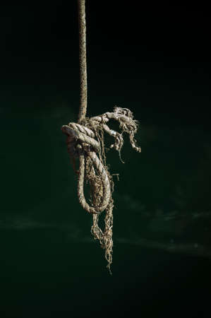 The end of a knotted rope has become a mass of complicated tangles.
