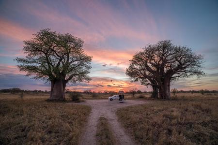 Remote campsite at Baines Baobab