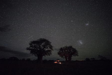 Baines Baobab campsite at night