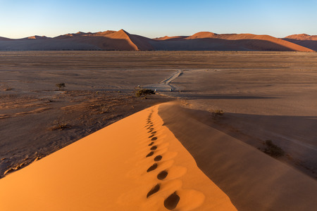 On top of Dune 45 in the Sossusvlei National Park