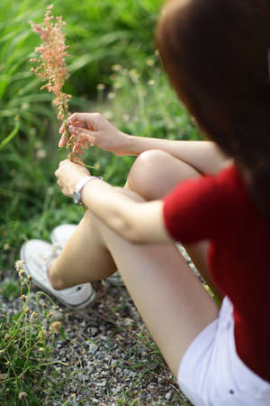 grass flower: grass flower and girl