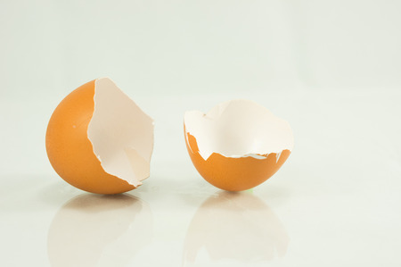 vanish: egg shell broken isolated