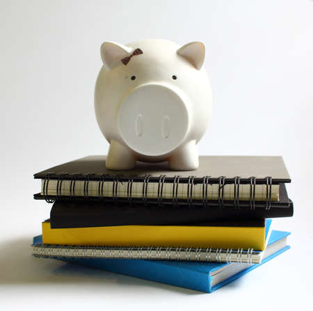 economize: Piggy Bank on Stack of books