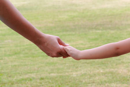 children hands: Adult And Child Holding Hand Together Stock Photo