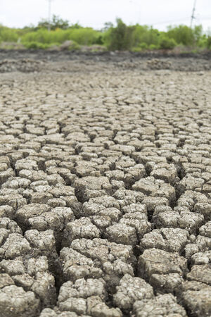 land with dry cracked ground after hot wave photo