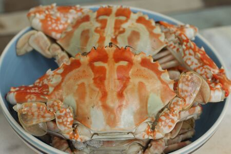 Steamed crabs on bowl photo