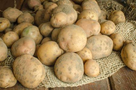 sackful: organic food - potatoes in burlap sackful