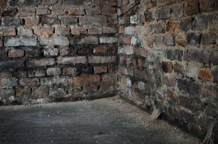 old bricks wall in cellar
