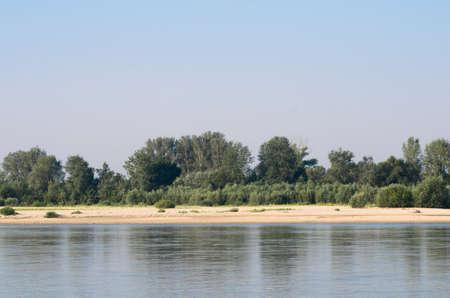 riverside trees: Vistula River near Warsaw on sunny day