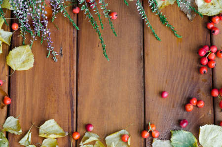 fall decoration on wooden background photo