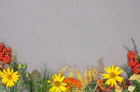 dried flower arrangement: autumn forest frame on grey background