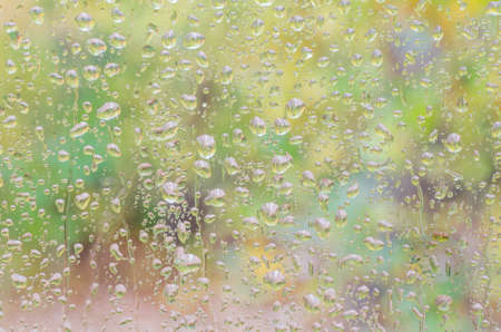 rain drops on window glass with forest background