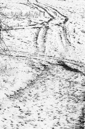tire tracks: tire tracks on ground covered with snow