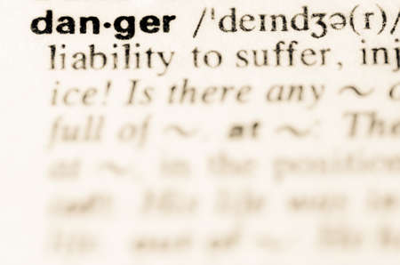 lexical: Definition of word danger in dictionary