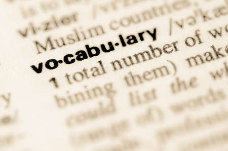 Definition of word vocabulary in dictionary